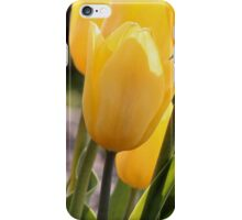 Brighter than the Spring Time! iPhone Case/Skin