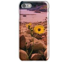 Old Town Bay, St Mary's iPhone Case/Skin