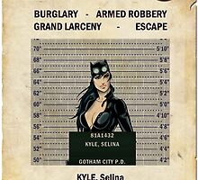 Catwoman - Gotham's Most Wanted by ianscott76