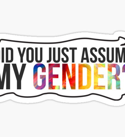 did you just assume my gender Sticker