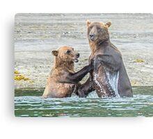 Bear Affection Metal Print