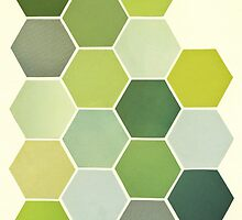 Shades of Green by Cassia