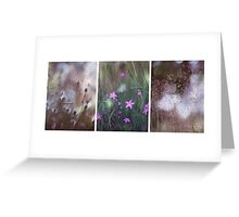 Mountain Grasses Greeting Card