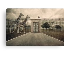 Displaced Canvas Print