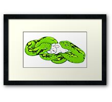 ANACONDA Framed Print