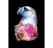 Eagle Eyes Photographic Print