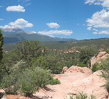 Garden of the Gods by Timothy  Ruf