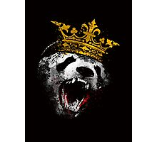 King Panda Photographic Print