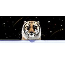 Richard Parker Photographic Print