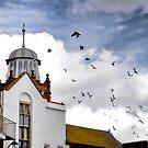 Pigeons in flight around East beach area....Dorset UK by lynn carter