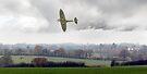 Eagle over England by Gary Eason