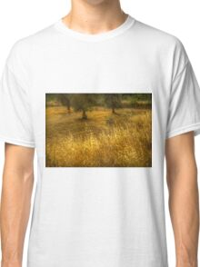 Golden corn in the olive grove Classic T-Shirt