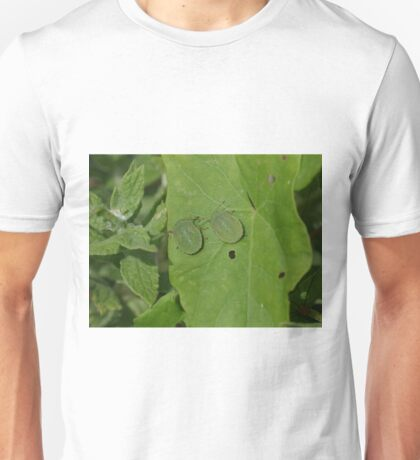Common Green Shield Bugs Unisex T-Shirt