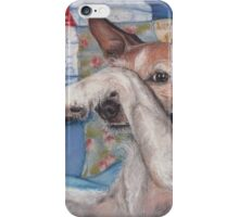 Dog in a Quilt iPhone Case/Skin