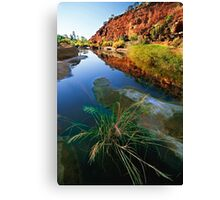 Palm Valley, Central Australia Canvas Print