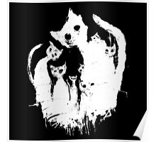 Ghost cat Poster