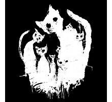 Ghost cat Photographic Print
