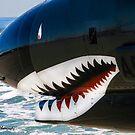 The Military Shark  by Heather Friedman