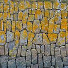 Harbour wall, Newlyn by Mortimer123