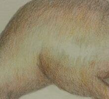 Pencil Wallaby Sticker