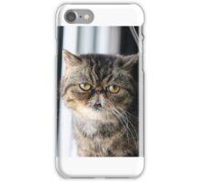 Cat Staring iPhone Case/Skin