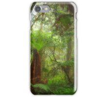 Rain Forrest Fantasy - Mount Wilson, NSW Australia - The HDR Experience iPhone Case/Skin