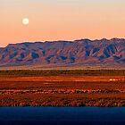 Port Augusta - Evening Train by Georgie Sharp