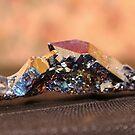 Sticks & Stones by Lani Chipman