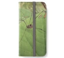 Daddy Long Legs Supermacro iPhone Wallet/Case/Skin