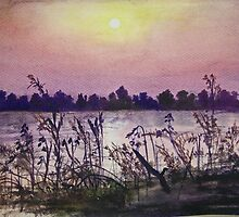 Sukhna Lake through a Writer's Lens by chapidee