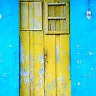 Blue Yellow Door by Barnbk02
