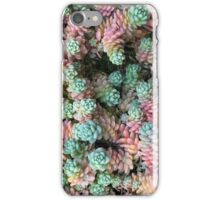Sedum Rainbow iPhone Case/Skin