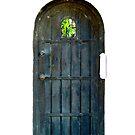 The Garden Door by Barnbk02