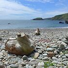 Driftwood and pebbles at Porth Ysgo by Anna Myerscough
