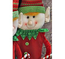 Ginger Elf Photographic Print