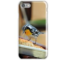 The Pastry Thief iPhone Case/Skin