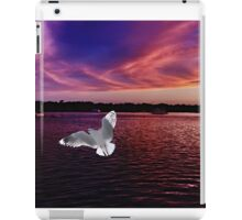 Dark Coloured Sunset with bright Seagull. Photo Art. iPad Case/Skin