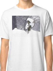 Consoling Angel • Cherub Classic T-Shirt