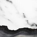 White marble Black Marble by Ilze Lucero
