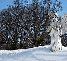 Consoling Angel • Sunshine by teakbird