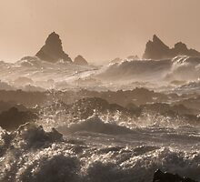 Island Bay from the Esplanade Early Morning Rough Seas by Mark Hill