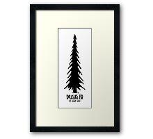 Douglas Fir - Old Growth Forest Framed Print