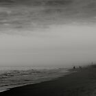 Foggy morning fishermen by Deewinged