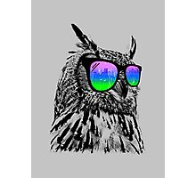 Cool Owl 1 Photographic Print