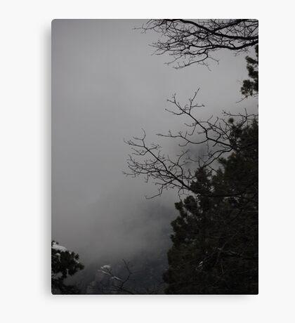 Idylwild Winter Scene Canvas Print