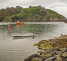 Lough Hyne - Skibbereen - West Cork - Ireland by TonyCrehan