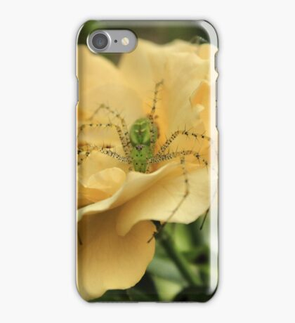 Spiders bed of roses iPhone Case/Skin