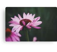Gentle Hearts Canvas Print