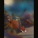 a still life by Rebecca Tun