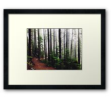 Sound of the Trees Framed Print